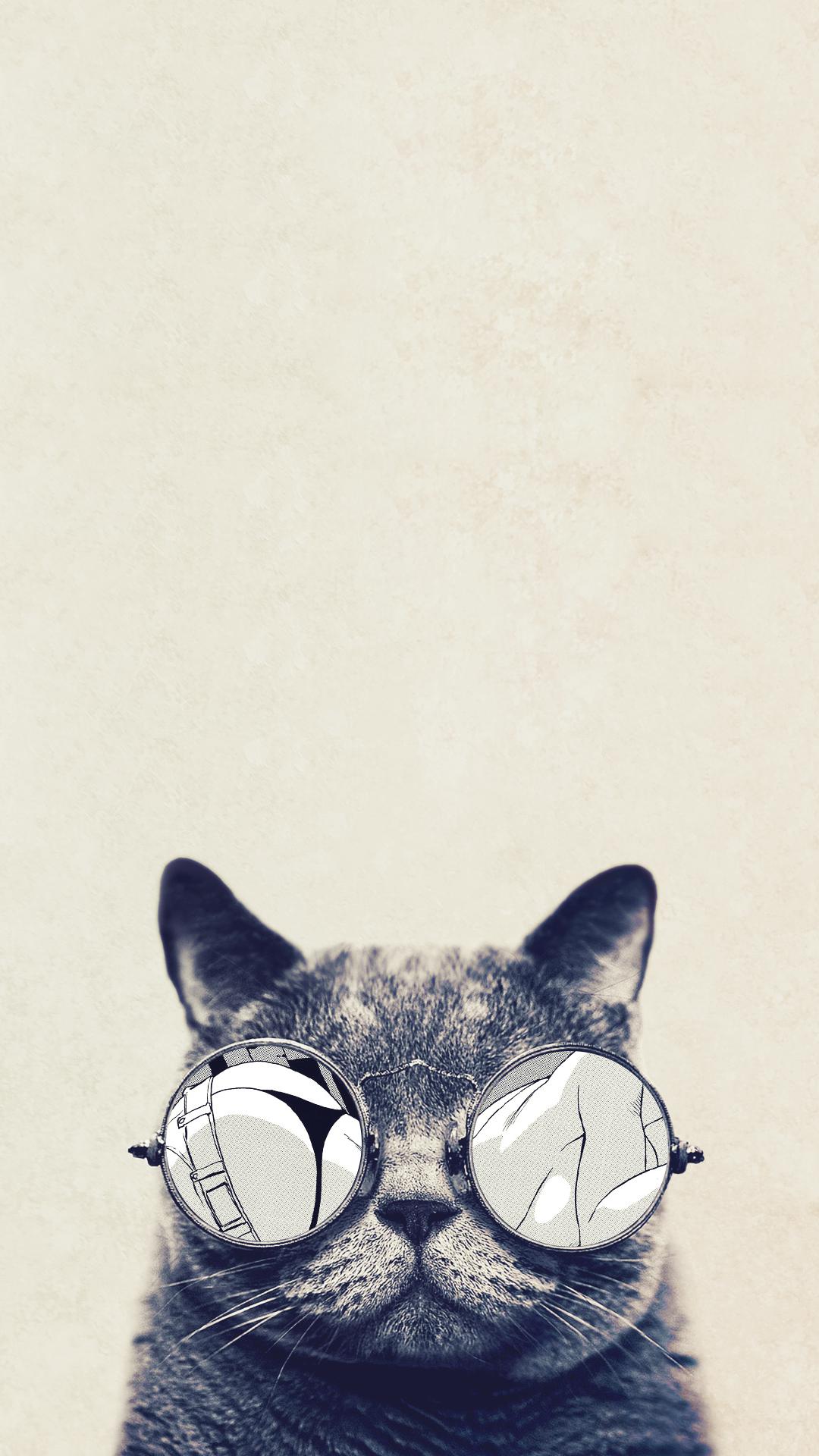 Cat glasses HTC hd wallpaper