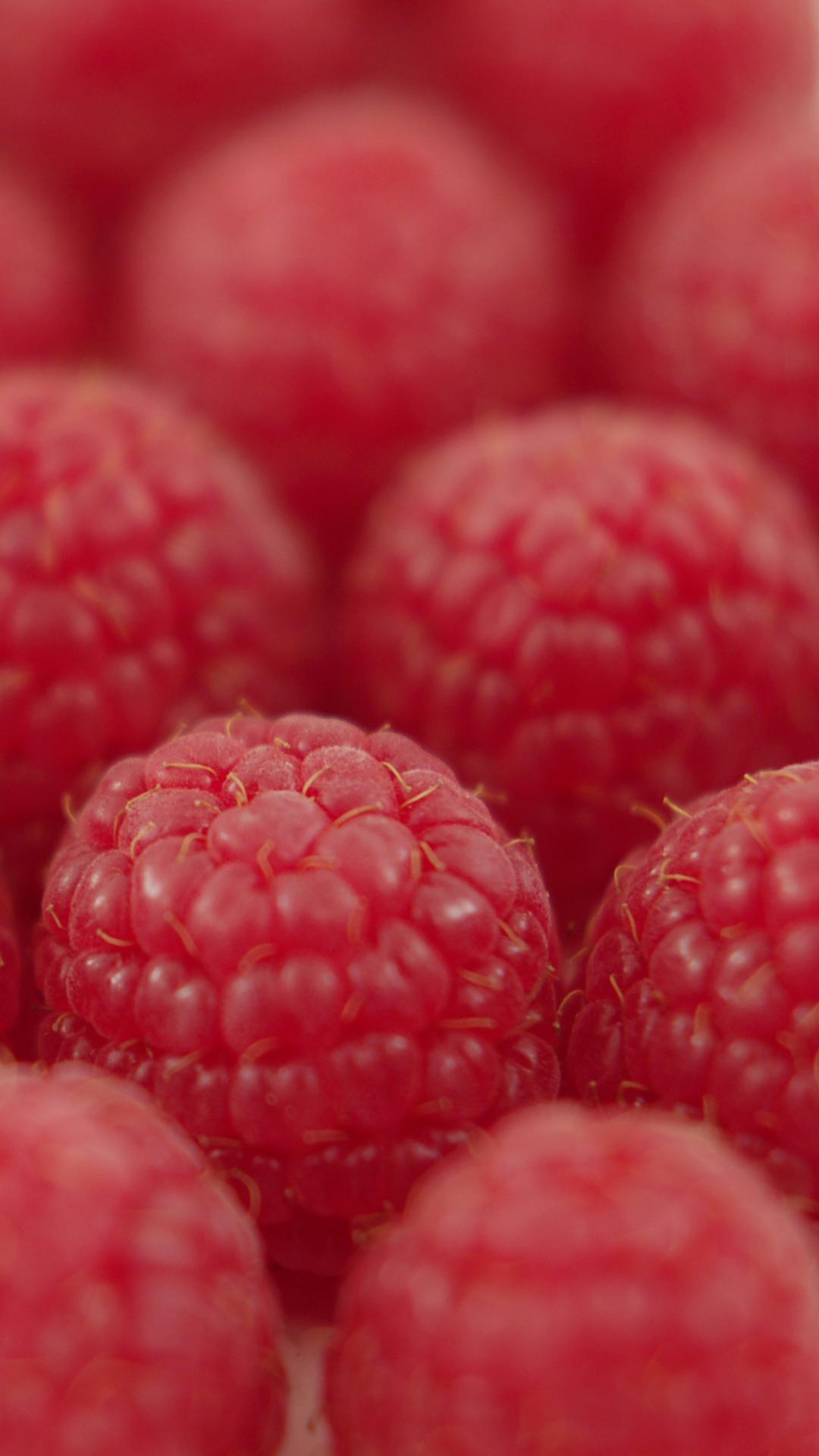 Blackberry Fruit htc one wallpaper