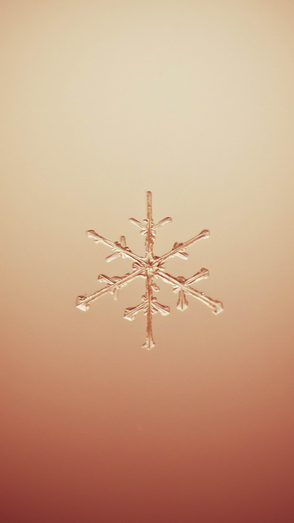 Snowflake on dark red