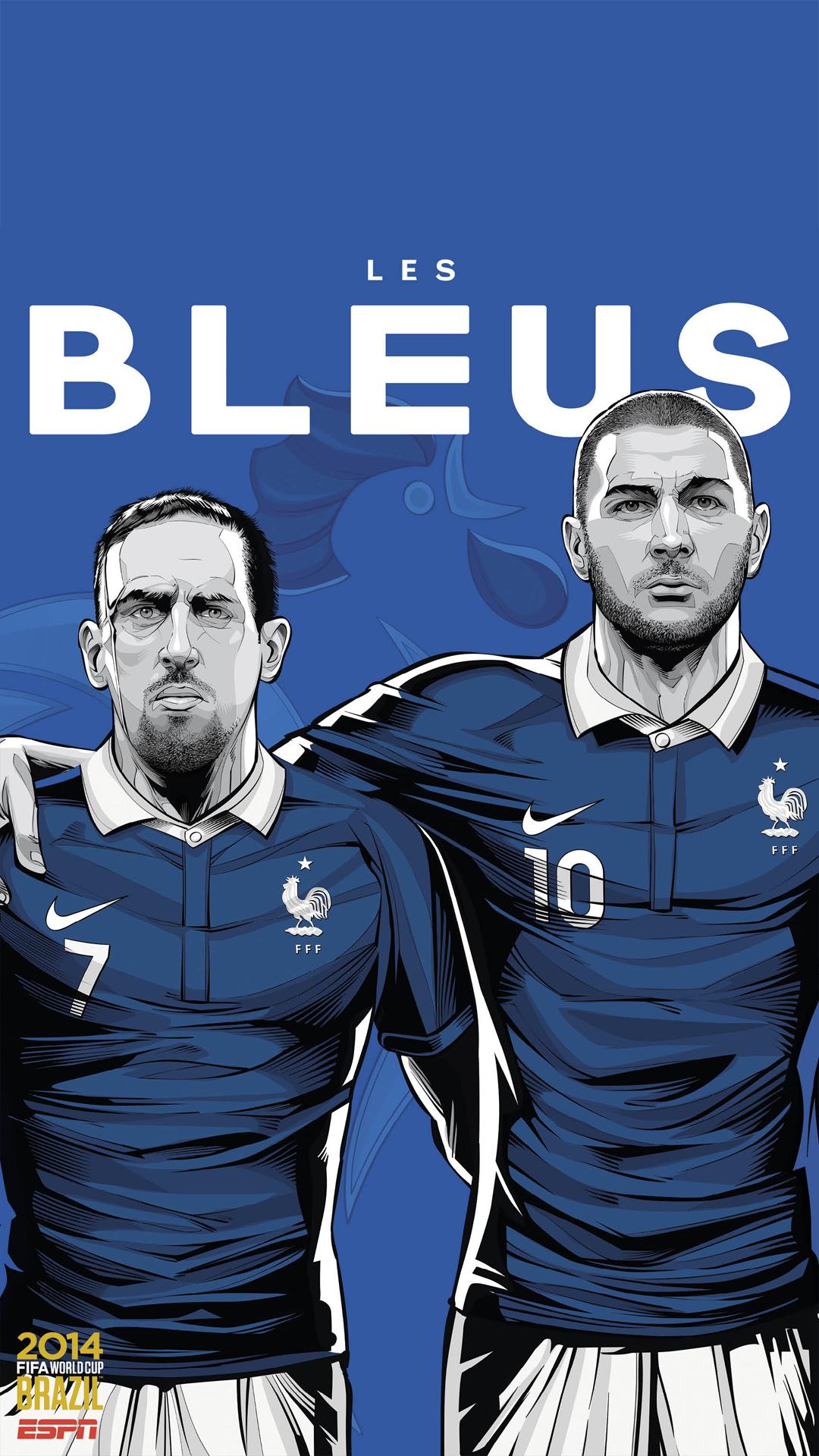 Brazil World Cup 2014 France
