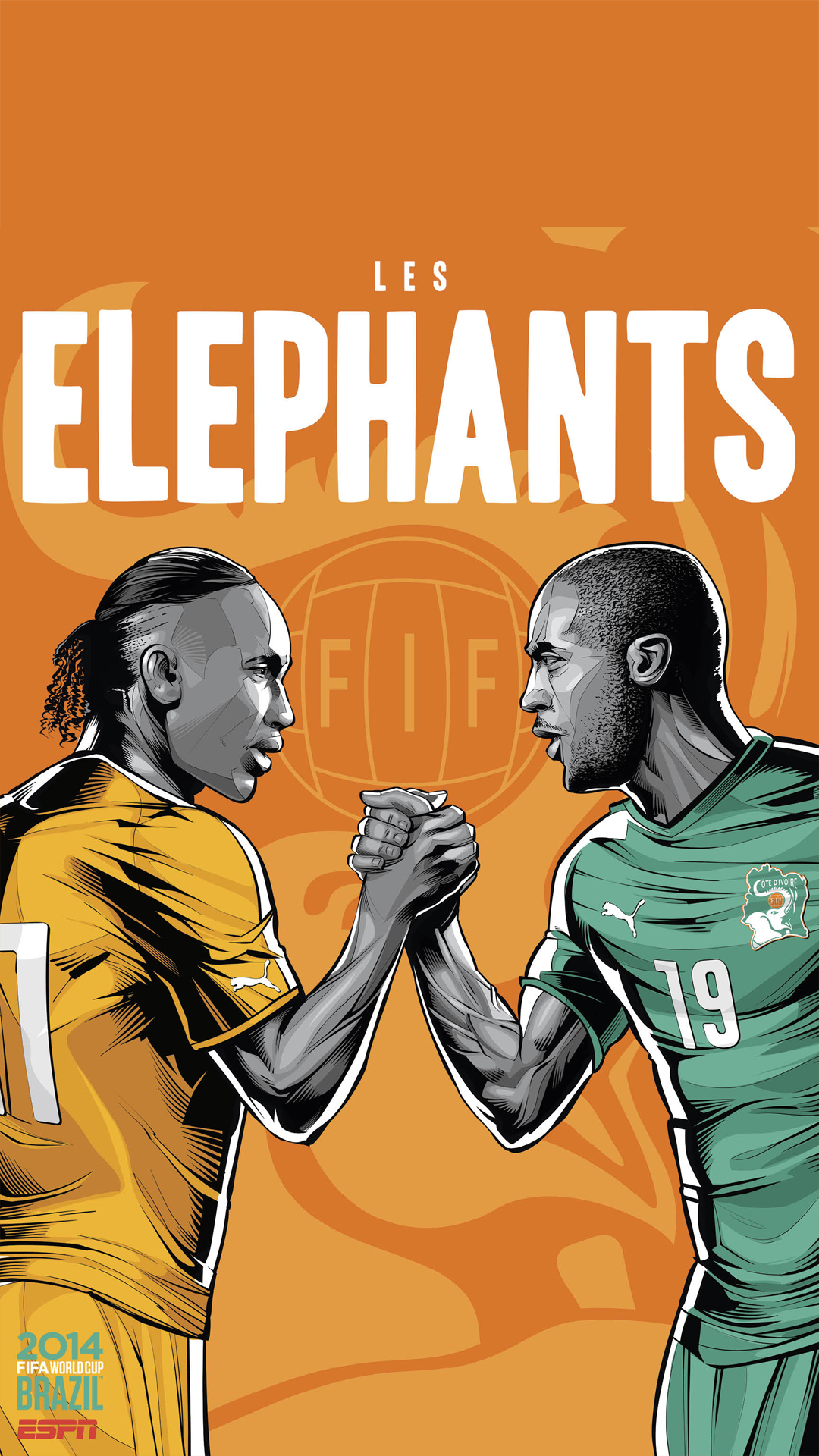 Brazil World Cup 2014 Ivory Coast