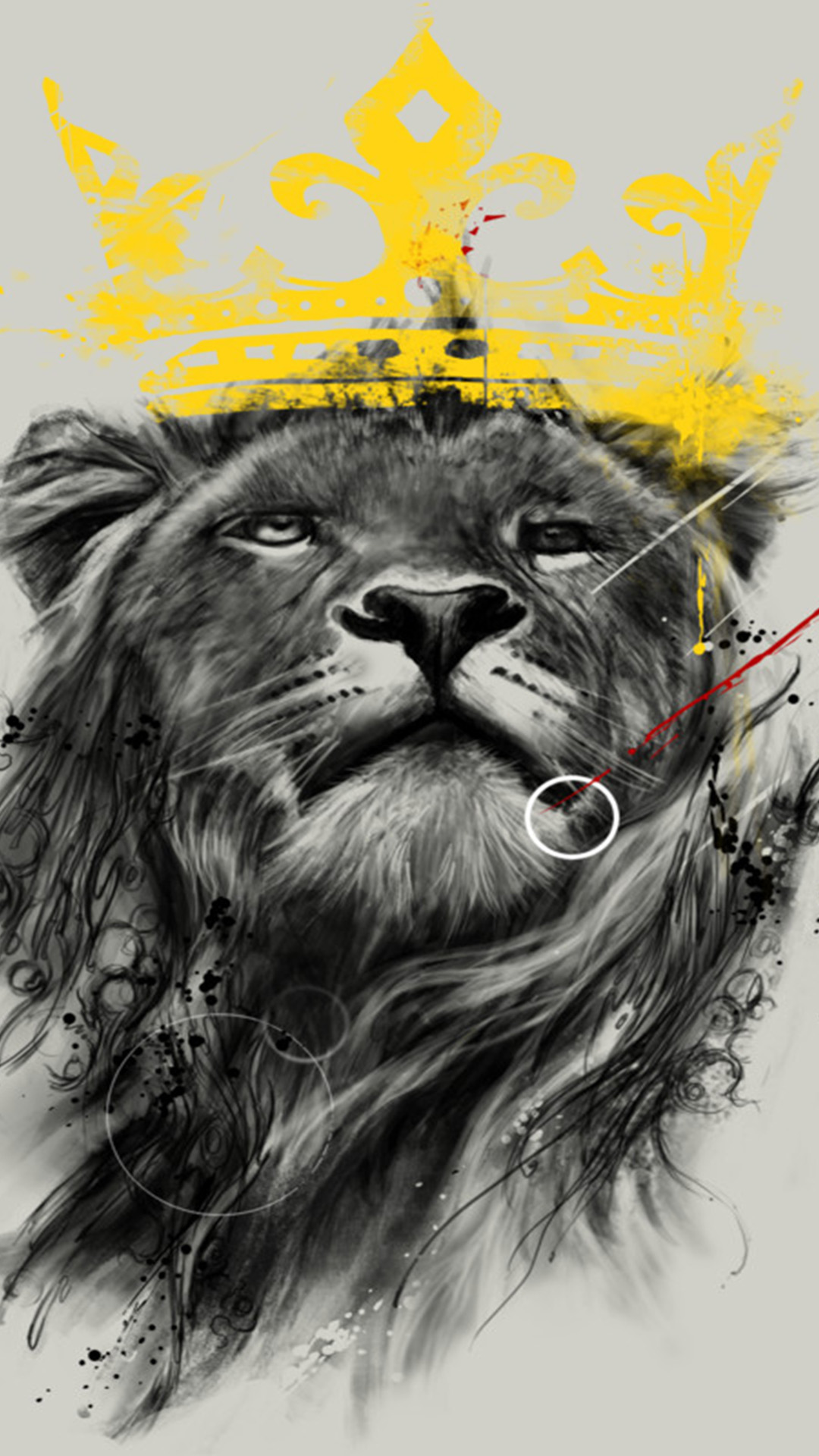 Lion Hipster Wallpaper Keywords And Pictures