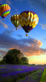 Rainbow Colored Air Balloons