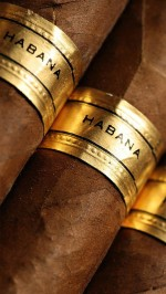 Habana Cigars