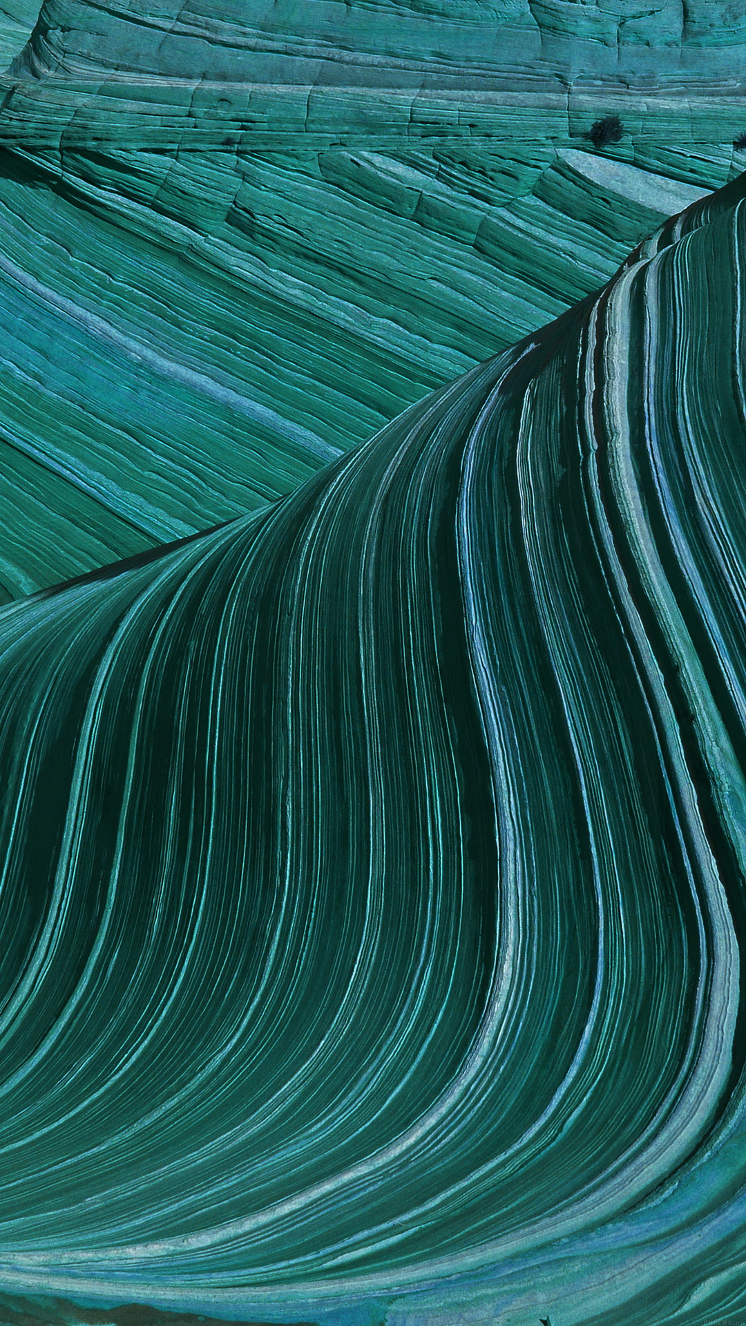 Swirling Green Patterns