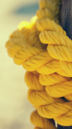 Yellow Rope Abstract