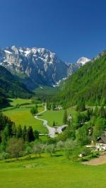 Mountain green field