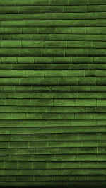 Green Bamboo Wood Texture