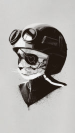 Cat Helmet Art