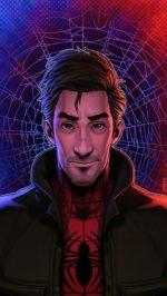 Peter Parker spider verse 2
